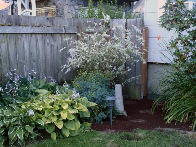 corner after weeding