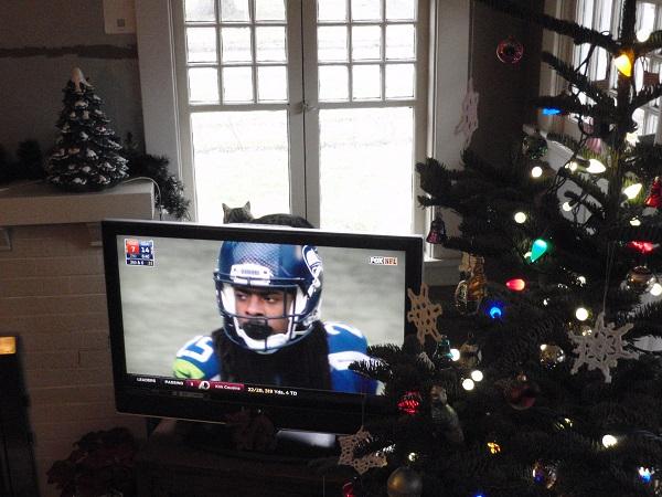Richard Sherman on the TV, with Christmas tree